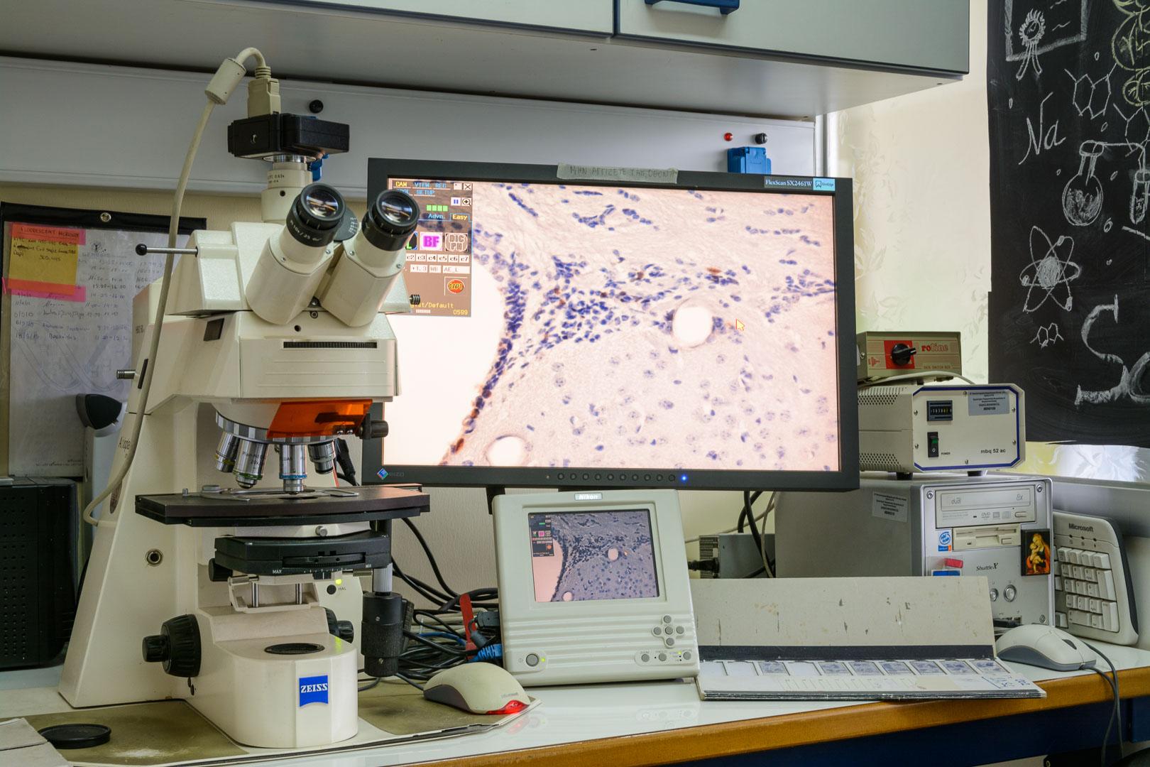 The Laboratory of Experimental Neurology and Neuroimmunology